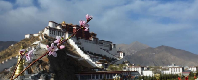 Chinese Group Visa for visiting Tibet